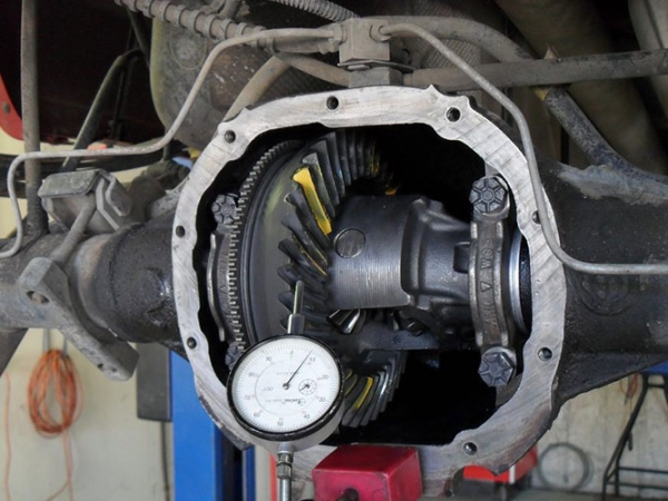 Differential Repair & Replacement